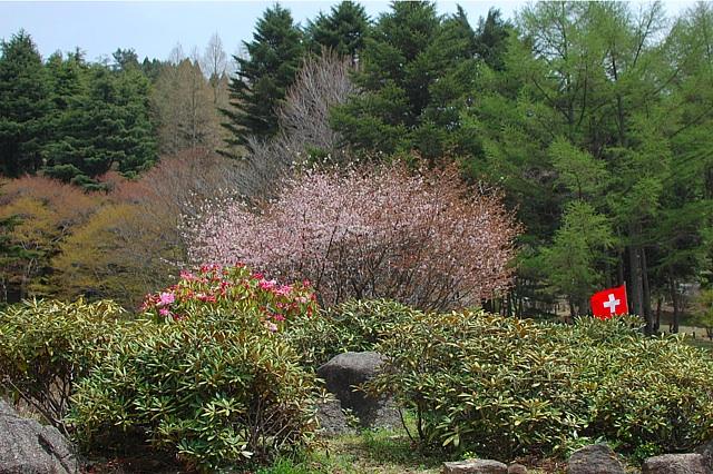 2011-05-04-02.jpg