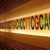 DeNAが個人向け遺伝子解析サービスを開始