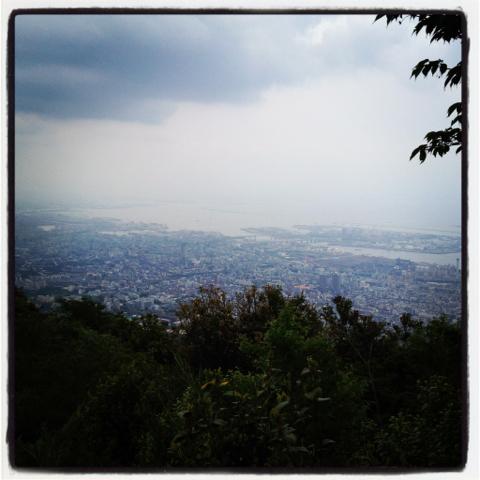 ややハード六甲登山コース。市ケ原〜トゥエンティクロス〜徳川道〜桜谷道〜摩耶山山頂 日帰りトレッキング