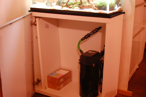 【49日目のクロメダカ】Do!aquaのポピーグラス&エーハイム外部フィルターの投入とIKEA水槽台のプチ改造