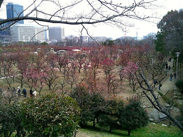 大阪城 梅園へ