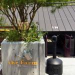 大阪でおしゃれインテリアの観葉植物を探すならthe Farm Universalがオススメ!