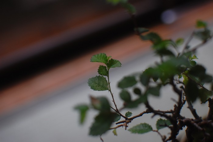 bs_2015-08-02- - 2