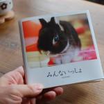 思い出の写真をオリジナルの写真集に。Photobackでフォトブックを作ってみた
