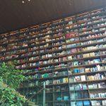 枚方T-SITE。蔦屋書店の吹き抜けを利用した壁面本棚が凄すぎる
