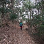 ポンポン山初心者におすすめの神峯山口〜善峯寺ルートで登山に行こう
