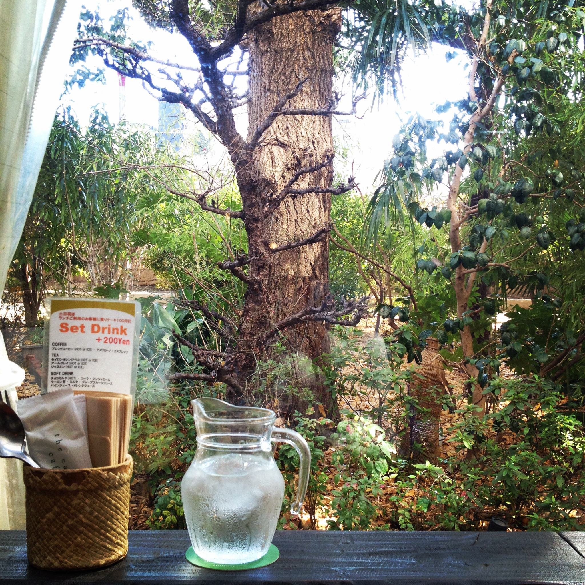 earth_cafe_2012-02-11_2.JPG