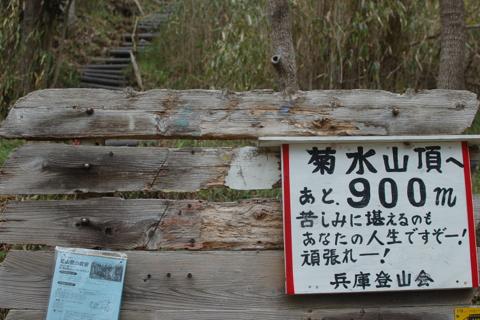 kikusui_2012-04-15_13.jpg