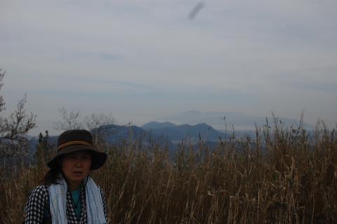 kikusui_2012-04-15_18.jpg